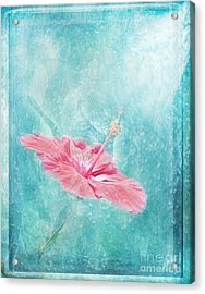 Flower Dancer Acrylic Print by Erika Weber