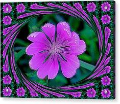 Flower Dream Acrylic Print by Rita Mueller