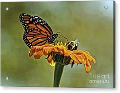 Flower Duet Acrylic Print