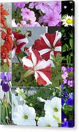 Flower Gardens Montage Acrylic Print