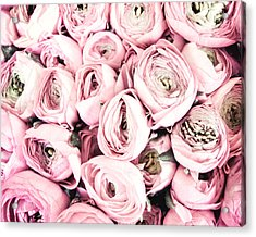 Flower Kisses Acrylic Print by Lupen  Grainne