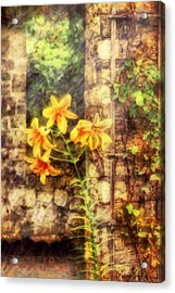 Flower - Lily - Yellow Lily  Acrylic Print by Mike Savad