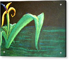 Flower Of The Water Acrylic Print