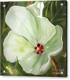 Flower One  Acrylic Print