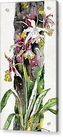 Acrylic Print featuring the painting Flower Orchid 03 Elena Yakubovich by Elena Yakubovich