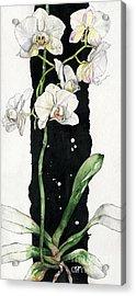 Flower Orchid 05 Elena Yakubovich Acrylic Print