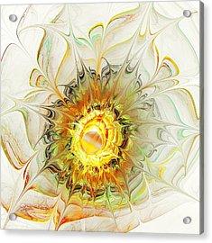 Flower Palette Acrylic Print by Anastasiya Malakhova
