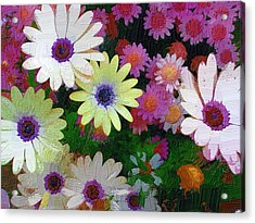 Flower Patch Acrylic Print