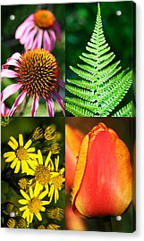 Flower Photo 4 Way Acrylic Print