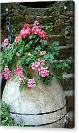 Acrylic Print featuring the photograph Flower Pot 8 by Allen Beatty