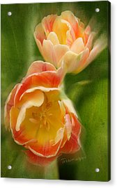 Flower Power Revisited Acrylic Print