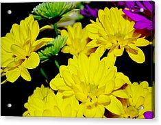 Flower Power Acrylic Print by Victoria Clark
