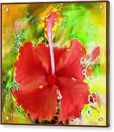 Flower Red Acrylic Print by Nedunseralathan R