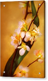 Flower - Sakura - A Touch Of Spring Acrylic Print by Mike Savad