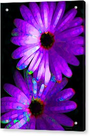 Flower Study 6 - Vibrant Purple By Sharon Cummings Acrylic Print by Sharon Cummings