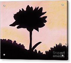 Acrylic Print featuring the drawing Flower - Sunrise by D Hackett