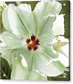 Flower Three Acrylic Print