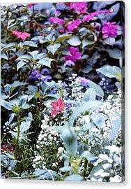 Flower Variety Garden Acrylic Print