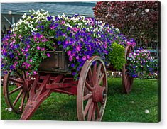 Flower Wagon Acrylic Print by Gene Sherrill