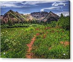 Acrylic Print featuring the photograph Flower Walk by Priscilla Burgers