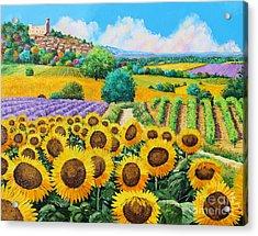 Flowered Garden Acrylic Print by Jean-Marc Janiaczyk