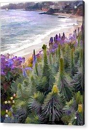 Flowering Coastline Acrylic Print by Elaine Plesser