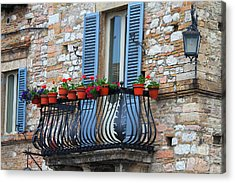 Flowers 3- Assisi Acrylic Print by Theresa Ramos-DuVon