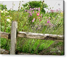 Flowers And Fences Acrylic Print by Marilyn Smith