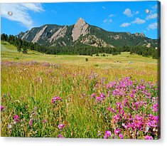 The Flatirons Colorado Acrylic Print