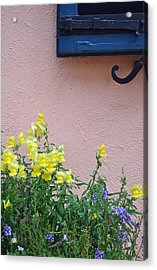 Flowers And Window Frame Acrylic Print by Bruce Gourley