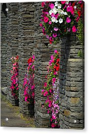 Flowers At Liscannor Rock Shop Acrylic Print