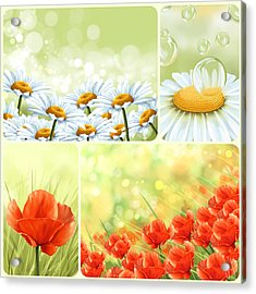 Flowers Collage Acrylic Print by Veronica Minozzi