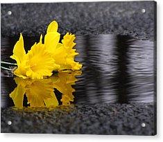 Flowers Come With Rain Acrylic Print by Freda Nichols