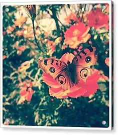 #flowers #flower #tagsforlikes #petal Acrylic Print