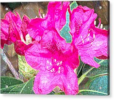 Flowers Full Of Life Acrylic Print by Aeabia A