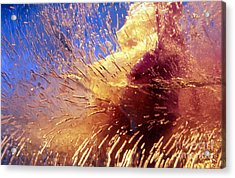 Acrylic Print featuring the photograph Flowers In Ice by Randi Grace Nilsberg