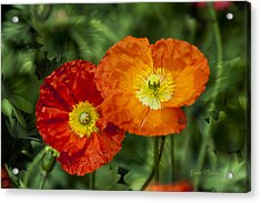 Flowers In Kodakchrome Acrylic Print