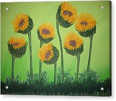 Flowers In Menopause  Acrylic Print