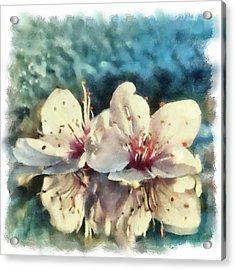 Flowers In Water Acrylic Print by Desmond De Jager