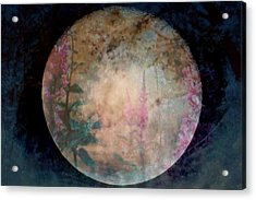 Flowers On The Moon  Acrylic Print by Rick Todaro