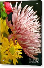 Flowers3 Acrylic Print by Susan Townsend