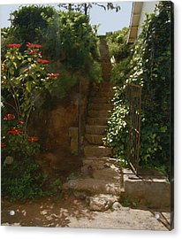 Flowery Stairway Acrylic Print by Dominique Amendola