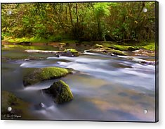 Flowing Serenity Acrylic Print
