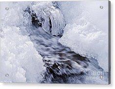 Flowing Acrylic Print by Simona Ghidini