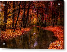 Flowing Through The Colors Of Fall Acrylic Print by Hannes Cmarits