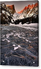 Flozen Dreams Acrylic Print