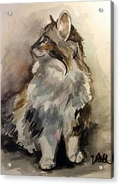 Acrylic Print featuring the painting Fluffy Cat by Pattie Wall