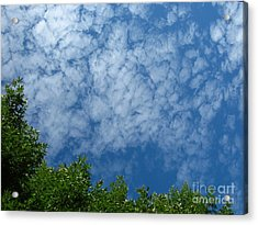 Fluffy Summer Clouds 1 Acrylic Print