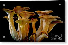 Fluted Clump Acrylic Print by AnnaJo Vahle