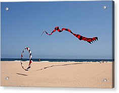 Fly A Kite - Old Hobby Reborn Acrylic Print by Christine Till